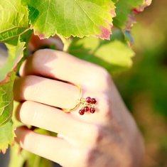Pietra simbolo di passione ed energia, il granato risplende sull'anello della collezione Uva. Scopri il tuo preferito su  https://www.sohasardinia.com/it/  #cannonauACE #antiage #sohasardinia #beautyproducts #beauty #beautyroutine #dailyroutine #skincareroutine#beautytips #beautylover #naturalproducts#parabenfree #siliconfree #fedeltapp #giveback